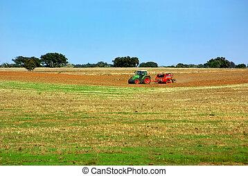 portugais, field., tracteur