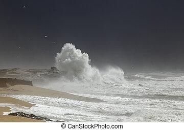 portugais, orage, côte