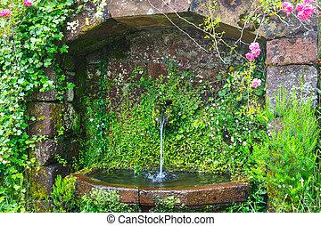 portugal, auf, bewässern quelle, schließen, madeira, berge