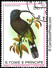 portugal-, circa, 1979:, a, 郵票, 列印, 在, 葡萄牙, 顯示, 一張 圖畫,...