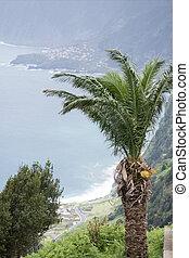 PORTUGAL MADEIRA RIBEIRA DA JANELA - a view of the coast at ...