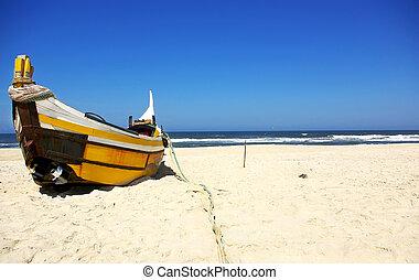 portugués, pesca, boat.
