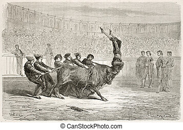 Portuguese bullfighting old illustration. Created by Gustave...