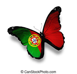 Portuguese flag butterfly, isolated on white