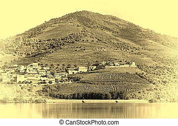 Banks of the River Douro