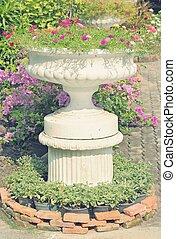 portulaca, oleracea, カラフルである, 咲く