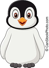 posar, bebê, cute, isolado, pingüim