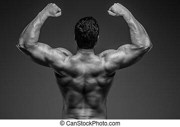 posar, bodybuilder, estúdio