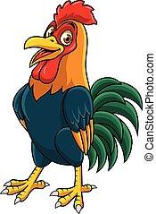 posar, caricatura, gallo