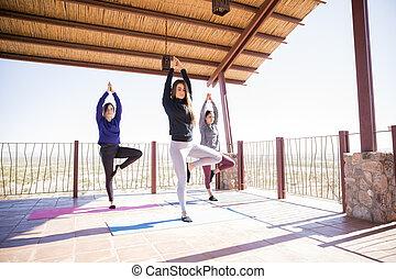 pose árvore, ioga, meditação