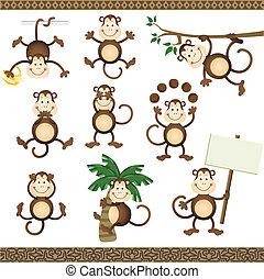 posições, macaco, variar
