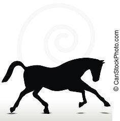 posición, caballo, silueta, corriente