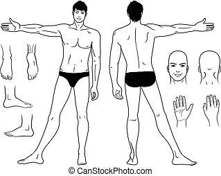 posición, desnudo, hombre