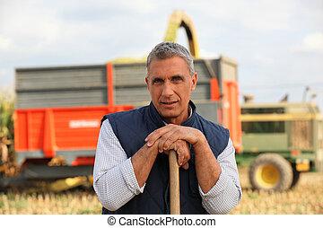 posición, granjero, ganado, vehículo, frente, transporte