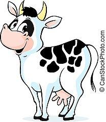posición, lindo, blanco, aislado, vaca