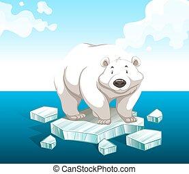 posición, polar, iceberg, oso