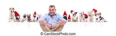 posiedzenie, dużo, przypadkowy, święty, przód, senior, psy, człowiek