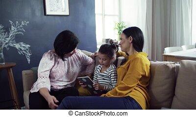 posiedzenie, tablet., macierz, babcia, sofa, mały, używając, dziewczyna, dom