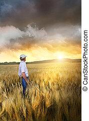 position homme, dans, a, champ, de, blé