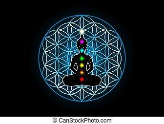 position, lotus, coloré, religion, alchimie, isolé, chakras., spirituality., fleur, bouddha, sacré, symbole, géométrie, vie, arrière-plan noir, cube., metatrons, 7, vecteur