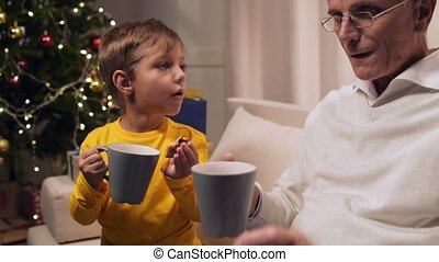 Positive aged man and his grandson drinking tea with cookies...