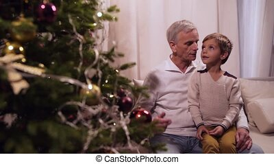 Positive aged man and his grandson looking at the Christmas tree
