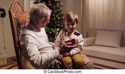 Positive aged man enjoying Christmas time with his grandson at home