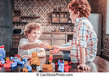 Positive happy brothers playing with the constructor set