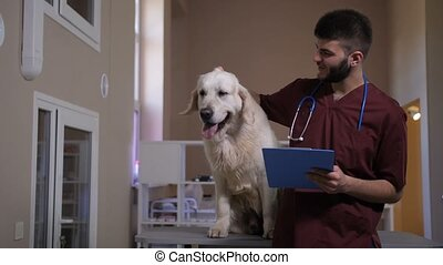 Positive vet taking notes on dog's diognosis - Positive...