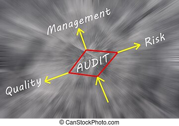 Possible outcomes of performing an audit drawn on a ...