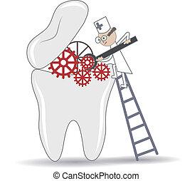 postępowanie, stomatologiczny, ilustracja, ząb, traktowanie...