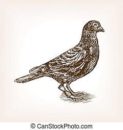 Post pigeon sketch vector illustration