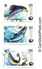 Post stamps with angling and fish