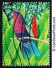FRANCE - CIRCA 2003: a stamp printed in the France shows Purple-throated Carib, Eulampis Jugularis, Bird, circa 2003