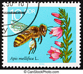 Postage stamp GDR 1990 Blooming Heather, Bees Collecting...