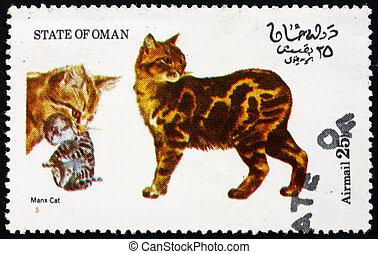OMAN - CIRCA 1973: a stamp printed in State of Oman shows Manx Cat, Cat, circa 1973