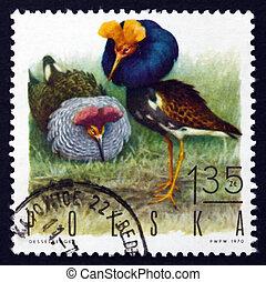 Postage stamp Poland 1970 Ruffs, Game Bird - POLAND - CIRCA...