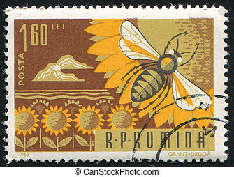postage stamp - ROMANIA -CIRCA 1963: stamp printed by ...