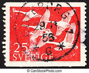 Postage stamp Sweden 1956 Whooper Swans