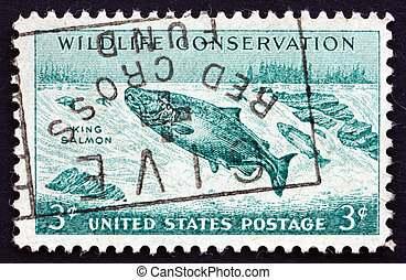 Postage stamp USA 1956 King Salmon Fish