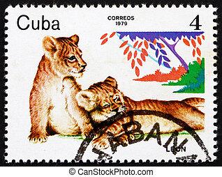 postaköltség, állatok,  1979, kuba, bélyeg, állatkert, oroszlán, kezdő újságírók