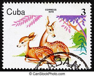 postaköltség, állatok,  1979, kuba, bélyeg, állatkert, őz