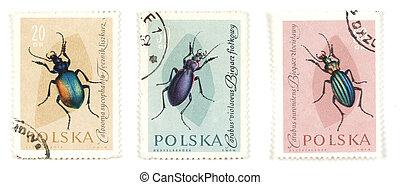 postaköltség, férgek, topog, rovar