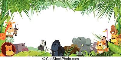 postal, con, salvaje, africano, animales