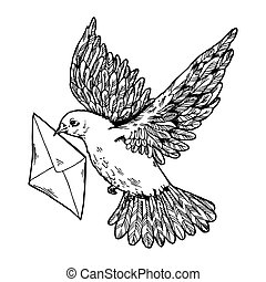 Postal dove with letter engraving style vector