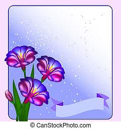 postal, flores, estrellas, plano de fondo