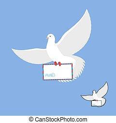 postal, paloma, y, envío, envelope., paloma blanca, lleva, y, mail., pájaro del vuelo, en, su, message.