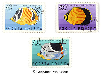 Postal stamps - set with fish
