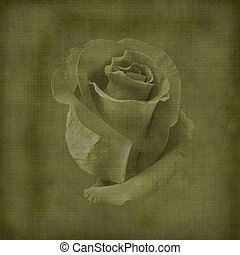 postal, vendimia, viejo, felicitación, rosas