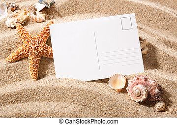 postcard from beach - holiday beach concept with shells,...